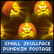 Halloween Skull Face Small Pumpkins - VideoHive Item for Sale