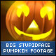 Halloween Stupid Face Big Pumpkins - VideoHive Item for Sale