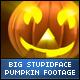 Halloween Stupid Face Big Pumpkins - VideoHive Item for Sale
