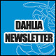 Dahlia 8-Page Business Newsletter - GraphicRiver Item for Sale