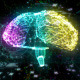 Futuristic Brain Hologram - VideoHive Item for Sale
