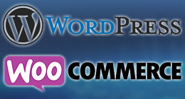 * Wordpress & Woocommerce Plugins *