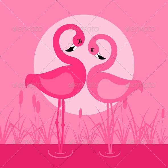 Flamingo - Animals Characters