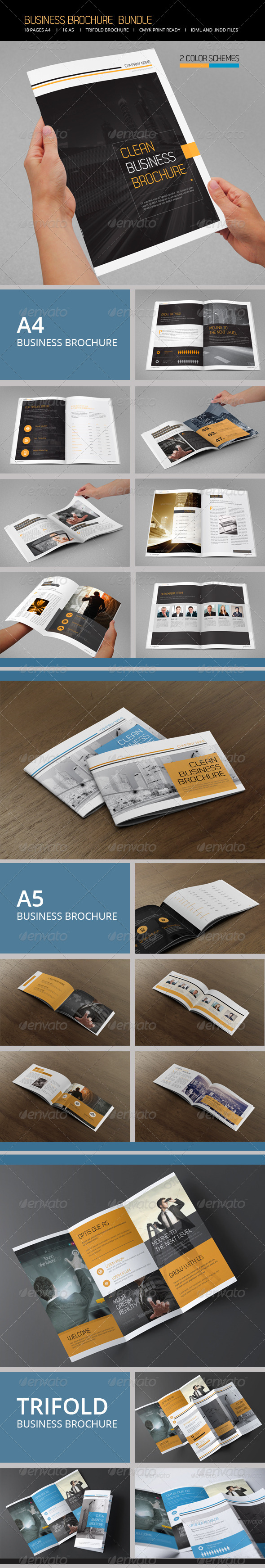 Business Brochure Bundle - Informational Brochures