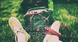 Experimental Electronic, IDM