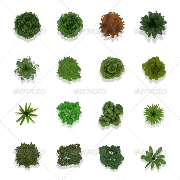 Trees Top View for Landscape - Landscapes Nature