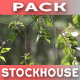 Spring Forest Rain Pack - VideoHive Item for Sale