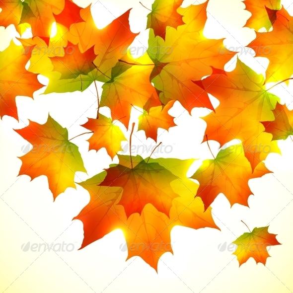 Autumn Falling Down Foliage Background - Seasons Nature