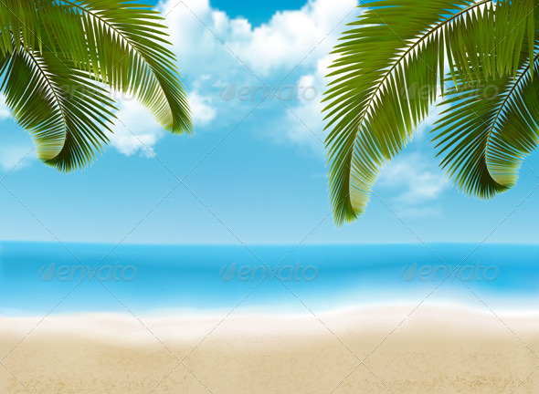 Palm Leaves on Beach - Landscapes Nature
