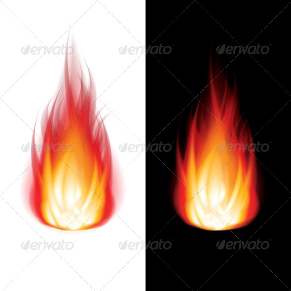 Fire on Black and White Background Vector - Organic Objects Objects