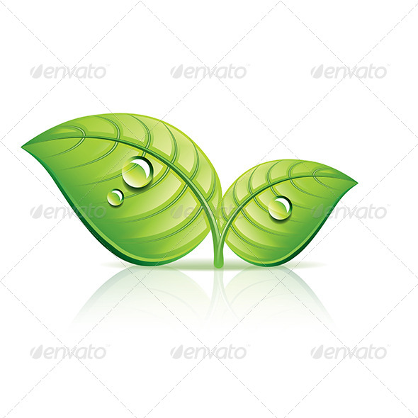 Green Leaves Ecology Icon - Organic Objects Objects
