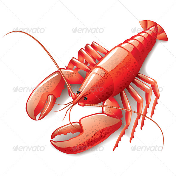 Cooked Lobster - Food Objects