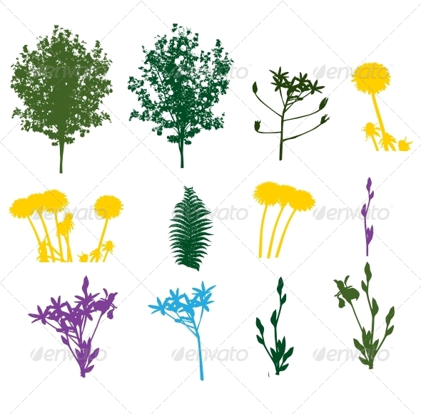 Set of Plant and Foliage Element Silhouettes - Seasons Nature