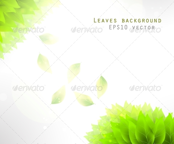 Green Leaves Background - Flowers & Plants Nature