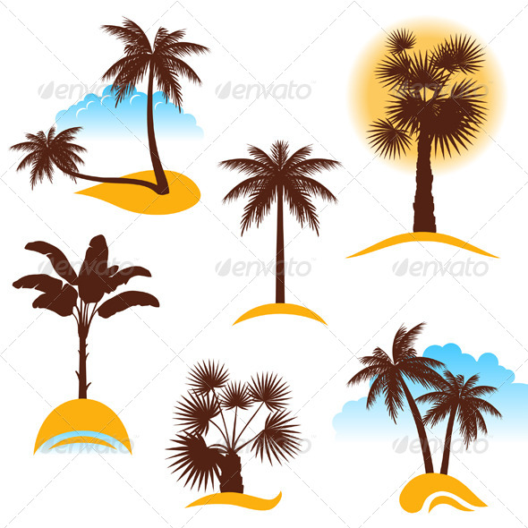 Palm Trees - Landscapes Nature