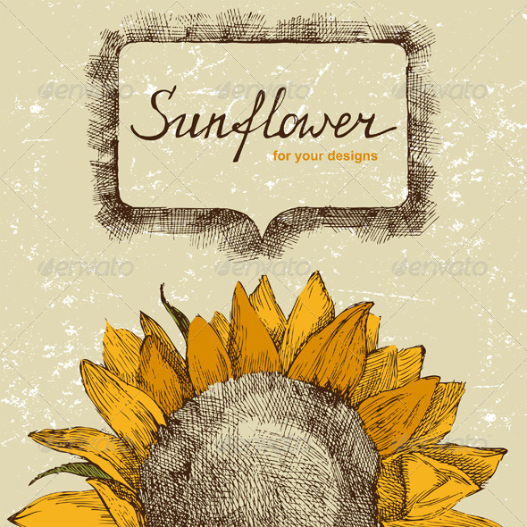 Hand Drawn Background with Sunflower - Flowers & Plants Nature