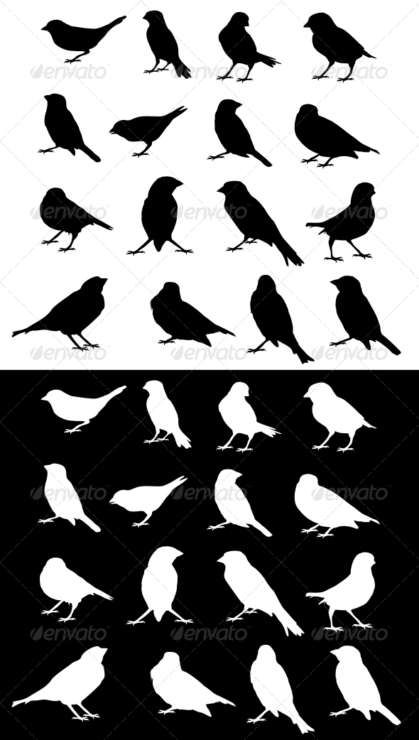Sparrow Silhouettes Set - Animals Characters