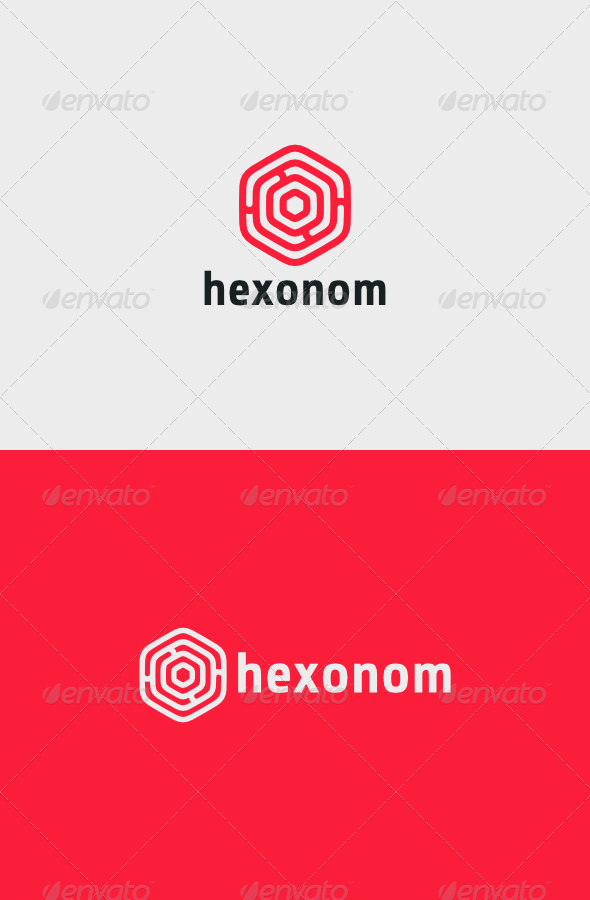 Hexonom Logo - Vector Abstract