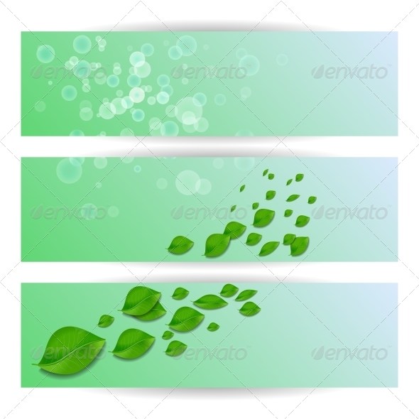 Template for Greeting Card Invitation - Flowers & Plants Nature