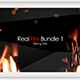 Real Fire Bundle 1