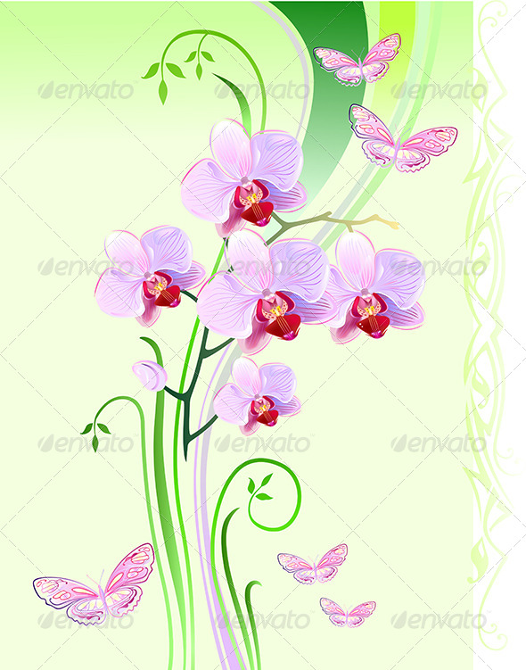 Orchids and Butterflies - Flourishes / Swirls Decorative