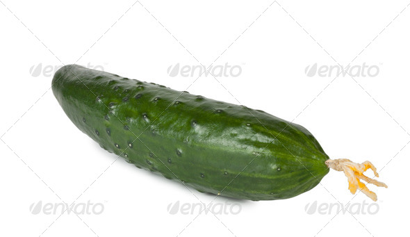 Green ripe juicy cucumber - Stock Photo - Images