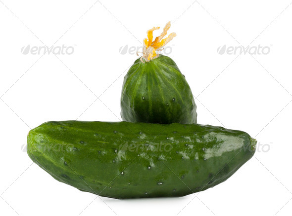 Green cucumber on each other isolated on white background - Stock Photo - Images