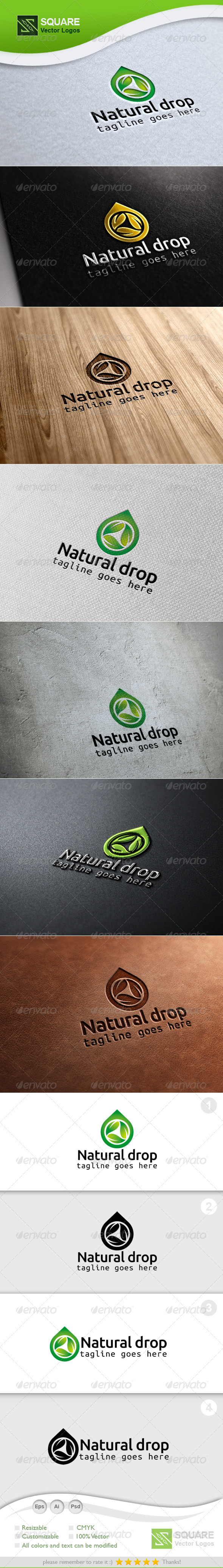 Leaf, Drop Vector Logo Template - Nature Logo Templates