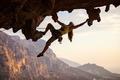 Rock climber at sunset - PhotoDune Item for Sale