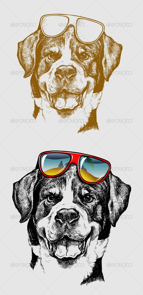 Cool Dog Illustration - Animals Characters