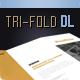 Brochure Tri-Fold DIN Long Series 7 - GraphicRiver Item for Sale