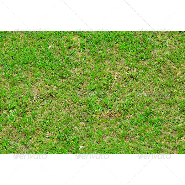 Tileable Newly Planted Grass Texture - Nature Textures