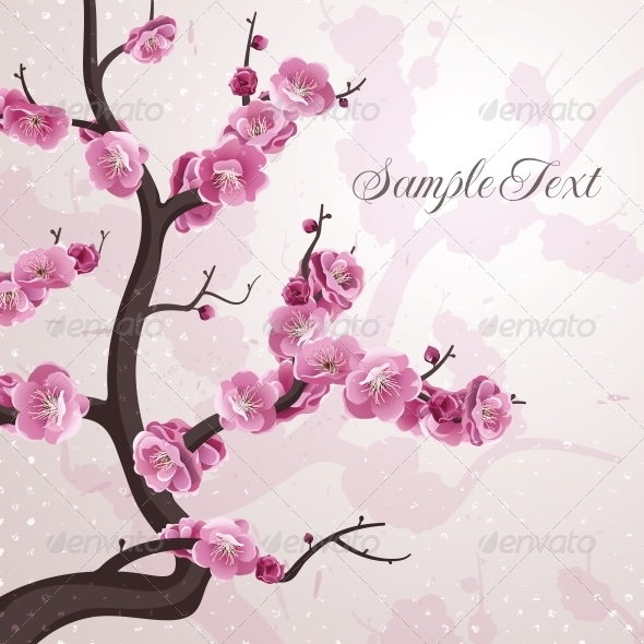 Cherry Flowers. Card with Spring Blossom. - Flowers & Plants Nature