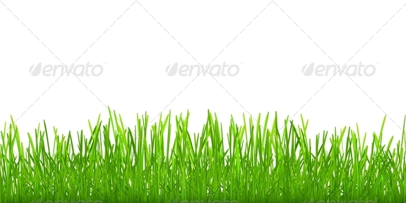 Seamless Grass - Flowers & Plants Nature