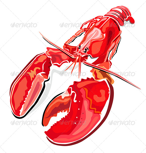 Lobster - Animals Characters