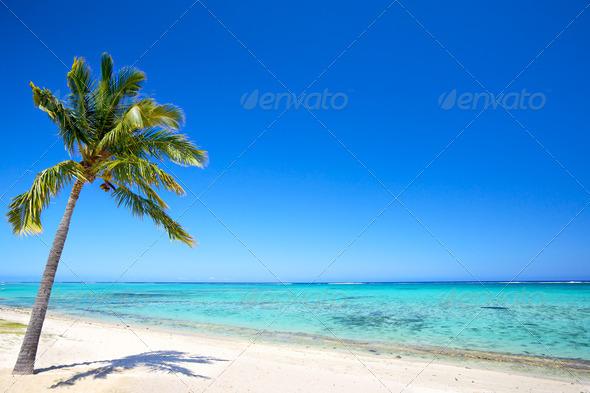 Paradise beach - Stock Photo - Images
