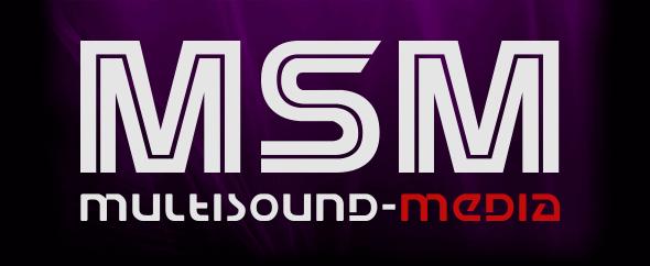 Msm envado logo 3