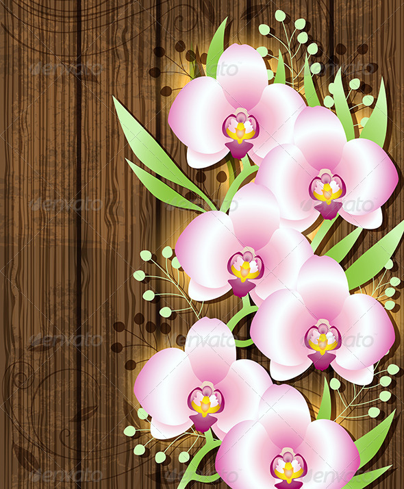 Wooden Background with Pink  Orchids - Flowers & Plants Nature