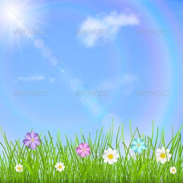 Background with Sky, Grass and Flowers - Flowers & Plants Nature