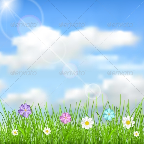 Background with Sky, Clouds, Grass and Flowers - Flowers & Plants Nature