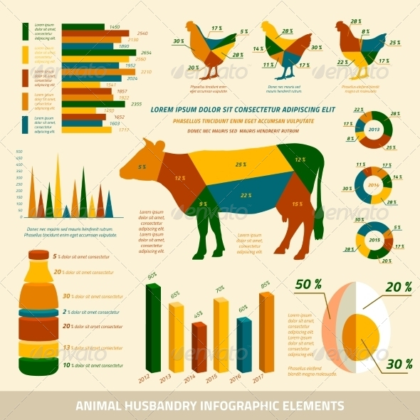 Animal Husbandry Infographics Flat Design Elements - Infographics