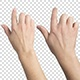 Touch Screen Gestures - VideoHive Item for Sale