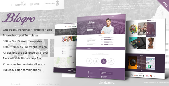 Blogro - One page Personal web design - Personal PSD Templates