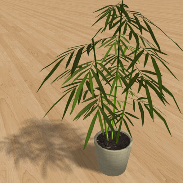 """Low-Poly Interior Plant """"Bamboo"""" - 3DOcean Item for Sale"""
