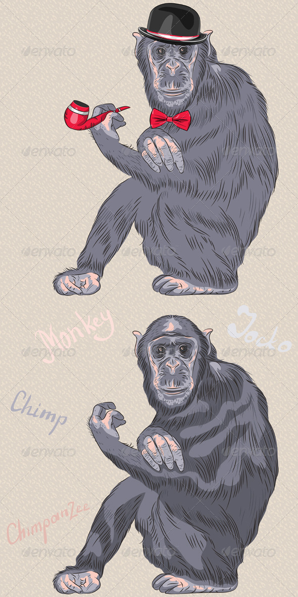 Hipster Chimpanzee - Animals Characters