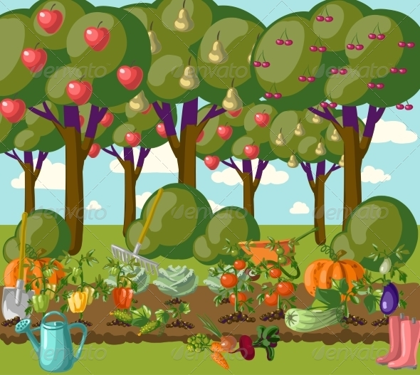 Garden - Flowers & Plants Nature