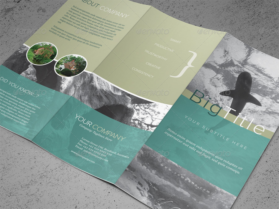 TriFold Brochure Psd Template By Kinzi  Graphicriver
