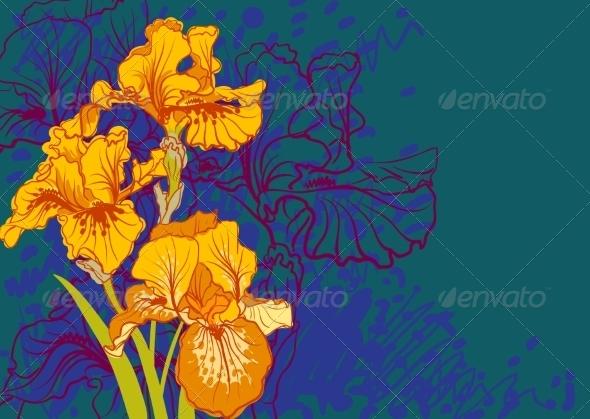Iris Flowers - Flowers & Plants Nature