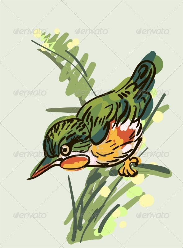 Bird - Animals Characters