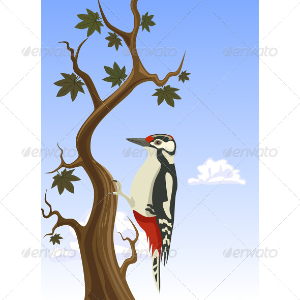 Woodpecker Clinging to a Tree Trunk - Animals Characters